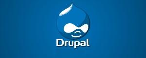 Hire Drupal Freelancer