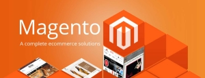Hire Magento Freelancer