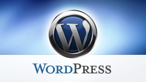 Hire WordPress Freelancer